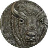 Европейский бизон (зубр) — Того — 2012 — серебряная монета с кристаллами