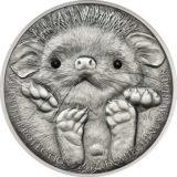 Ушастый еж — 2012 — Монголия — серебряная монета с кристаллами